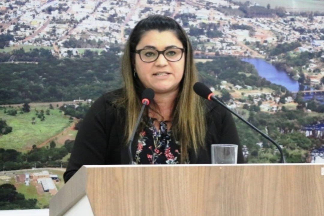 Redução no número de vereadores volta ser debatida na Câmara de Abelardo Luz