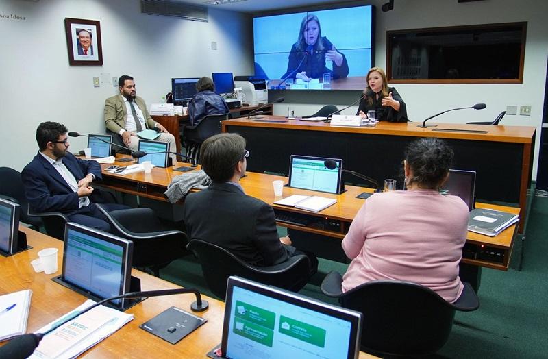 Comissão debate programa Brasil Amigo da Pessoa Idosa