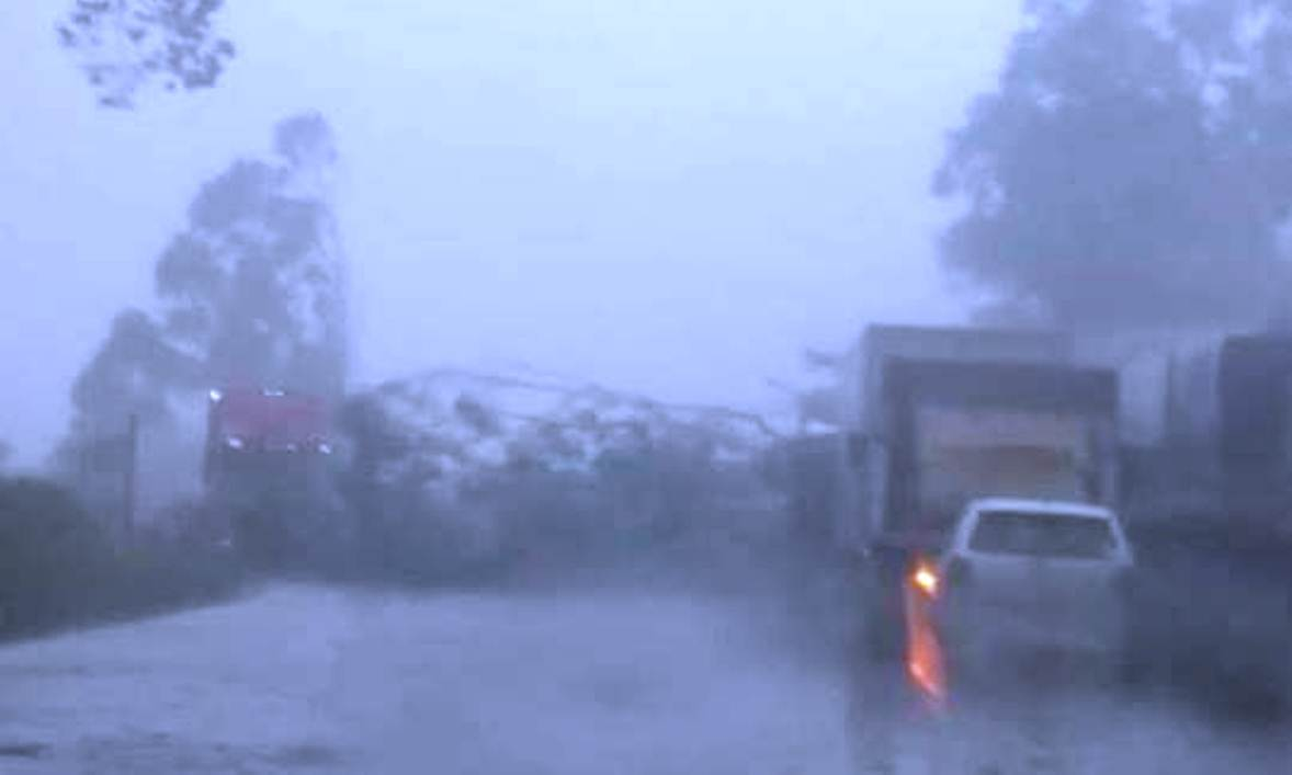Árvores na pista: Alerta aos motoristas que transitam na PRC 280