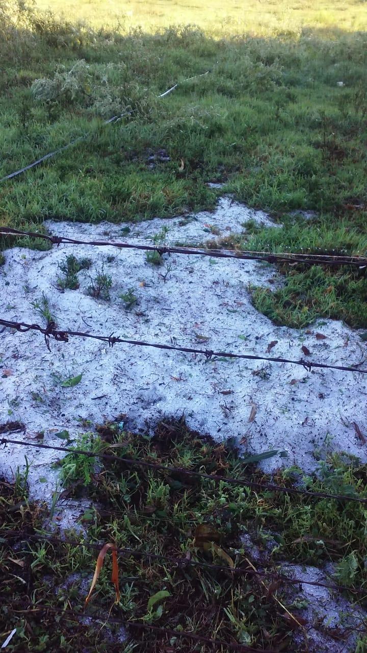 Vendaval e granizo atingem interior de Honório Serpa
