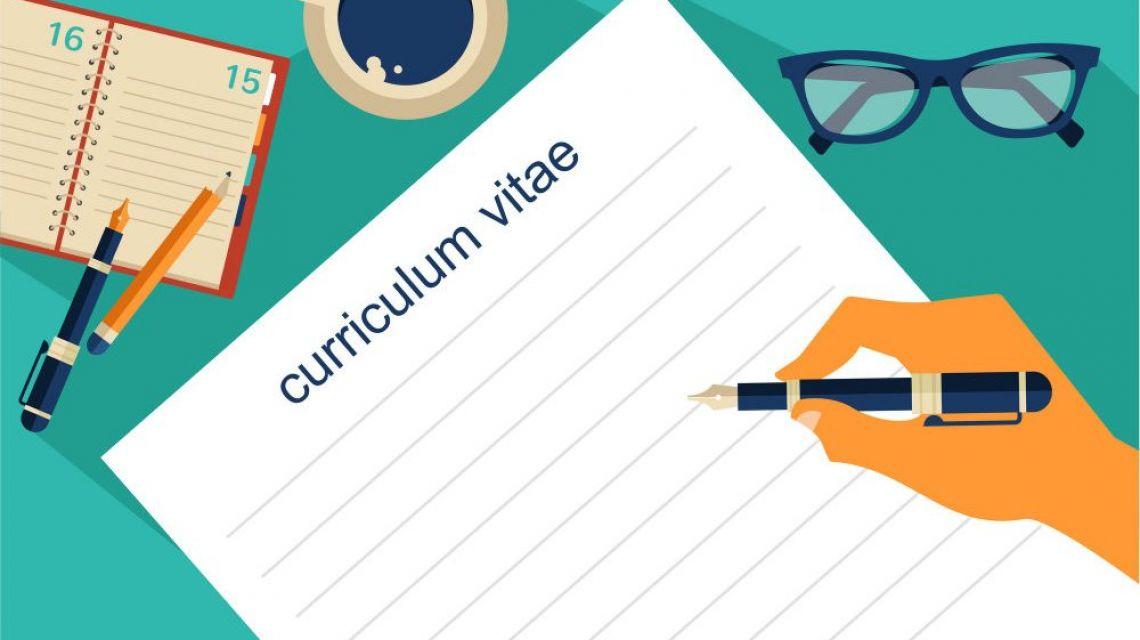 Qual item o empregador analisa primeiro no Currículo?