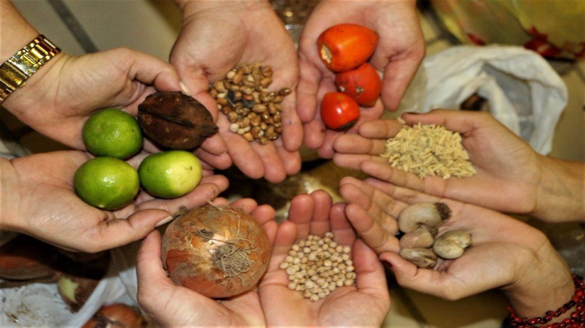 XVI Festa Regional das Sementes será lançada nesta quarta-feira