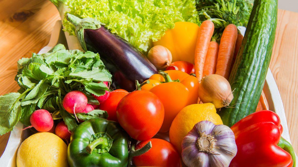 Municípios realizarão Conferências da Segurança Alimentar