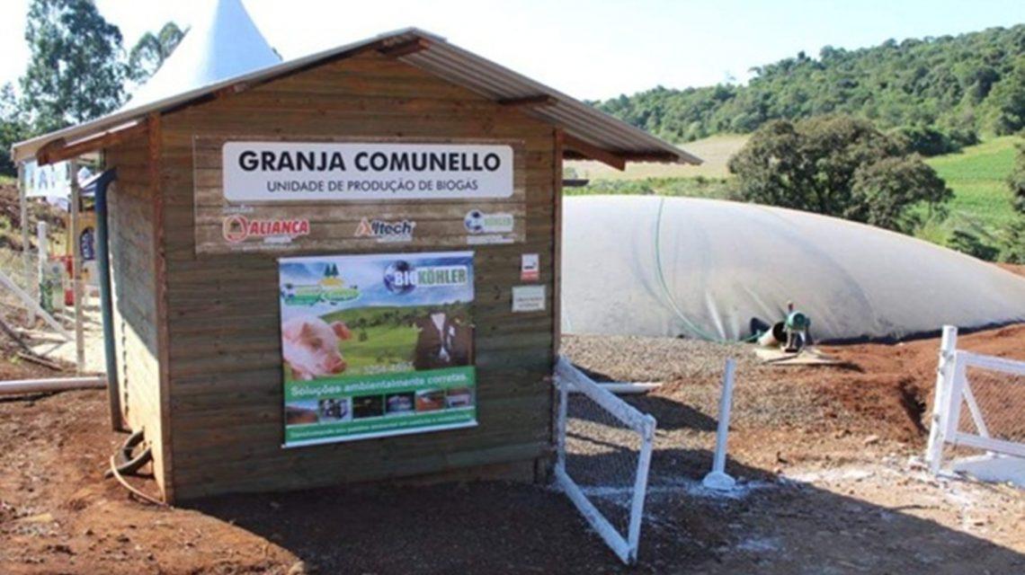 Propriedade de Francisco Beltrão busca certificação nacional na produção de leite