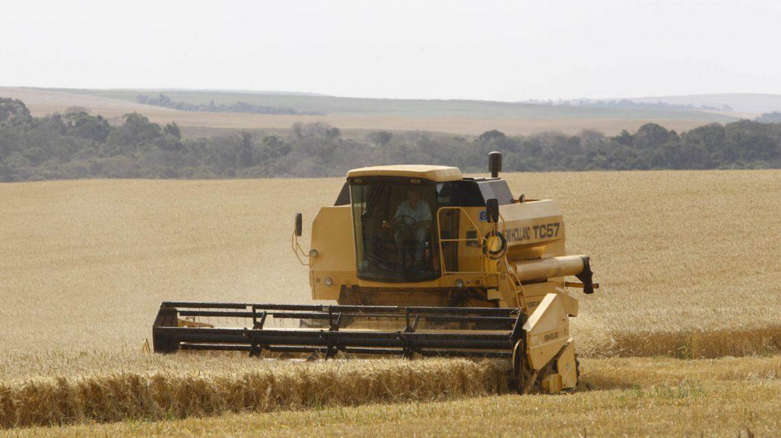 Microrregião de Palmas movimentou R$ 430 milhões em financiamentos agrícolas