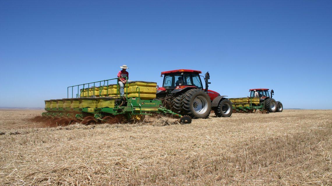 Plantio da soja será liberado no Paraná em 11 de setembro