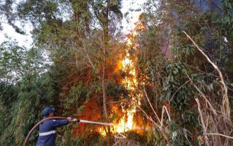 Defesa Civil combate incêndio na Reserva Indígena Guarani, em Chopinzinho