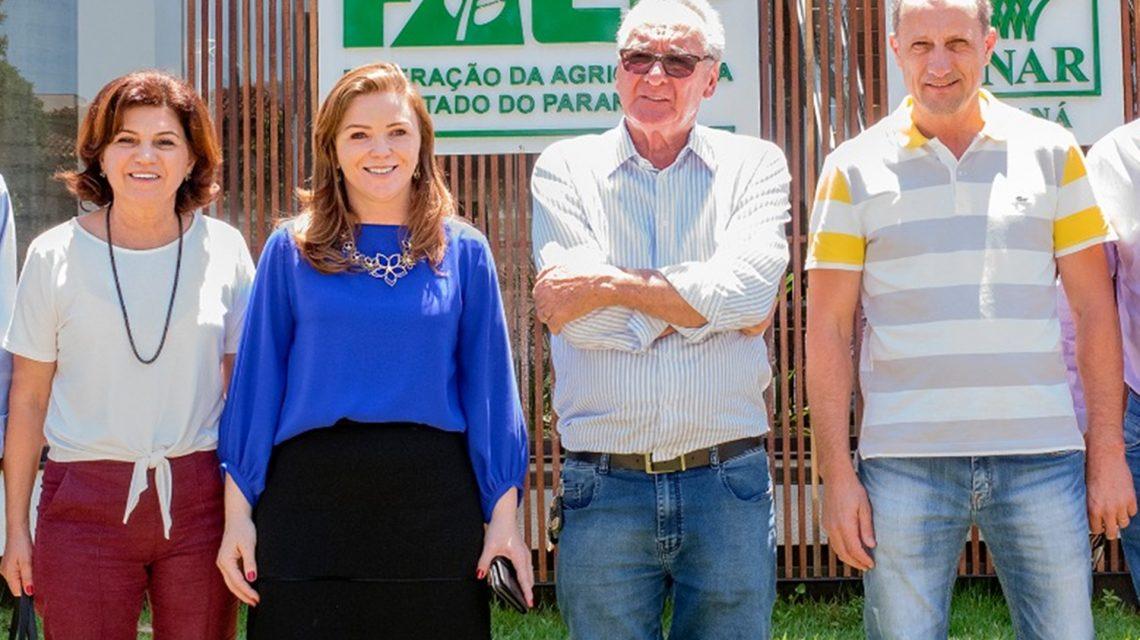 Paraná não tem mais data-limite para plantio de soja safrinha