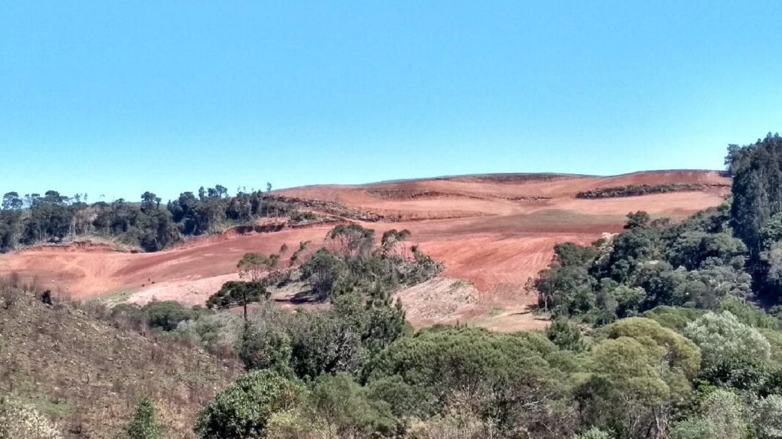 Polícia Ambiental constata desmatamento nativo em Ponte Serrada