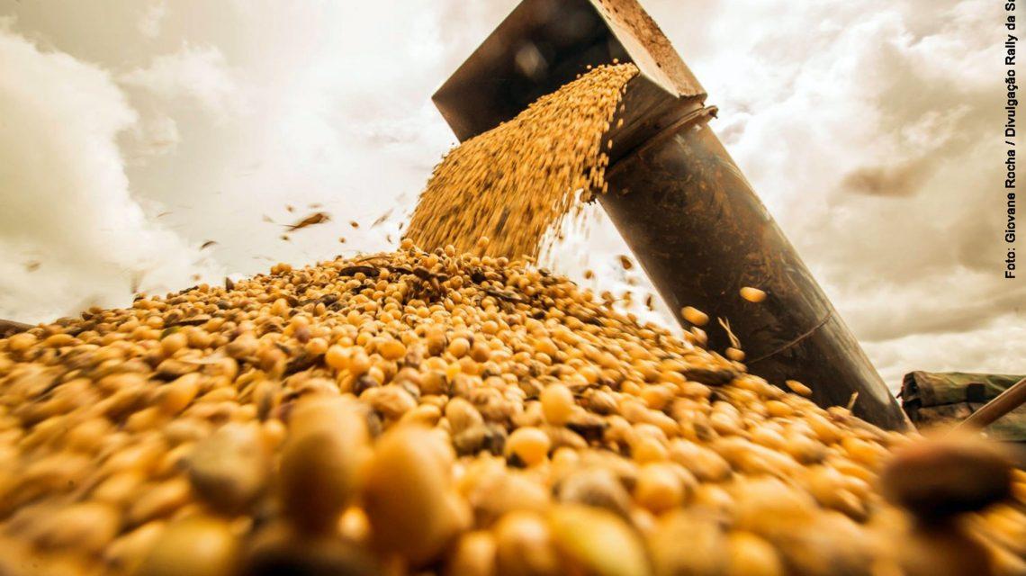 Soja deve continuar lucrativa em 2020, garantem especialistas em agroeconomia