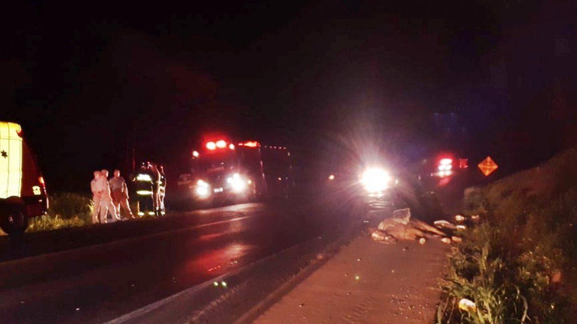 Homem e cavalo morrem atropelados na PR-280, em Pato Branco