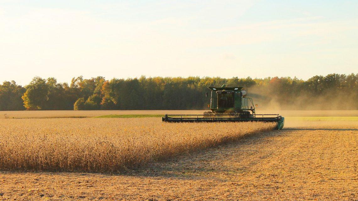Região de Pato Branco em fase adiantada na colheita da soja