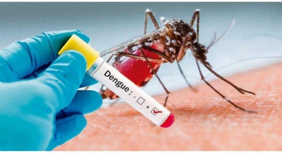 ALERTA: Francisco Beltrão registra o terceiro caso de dengue em 2020