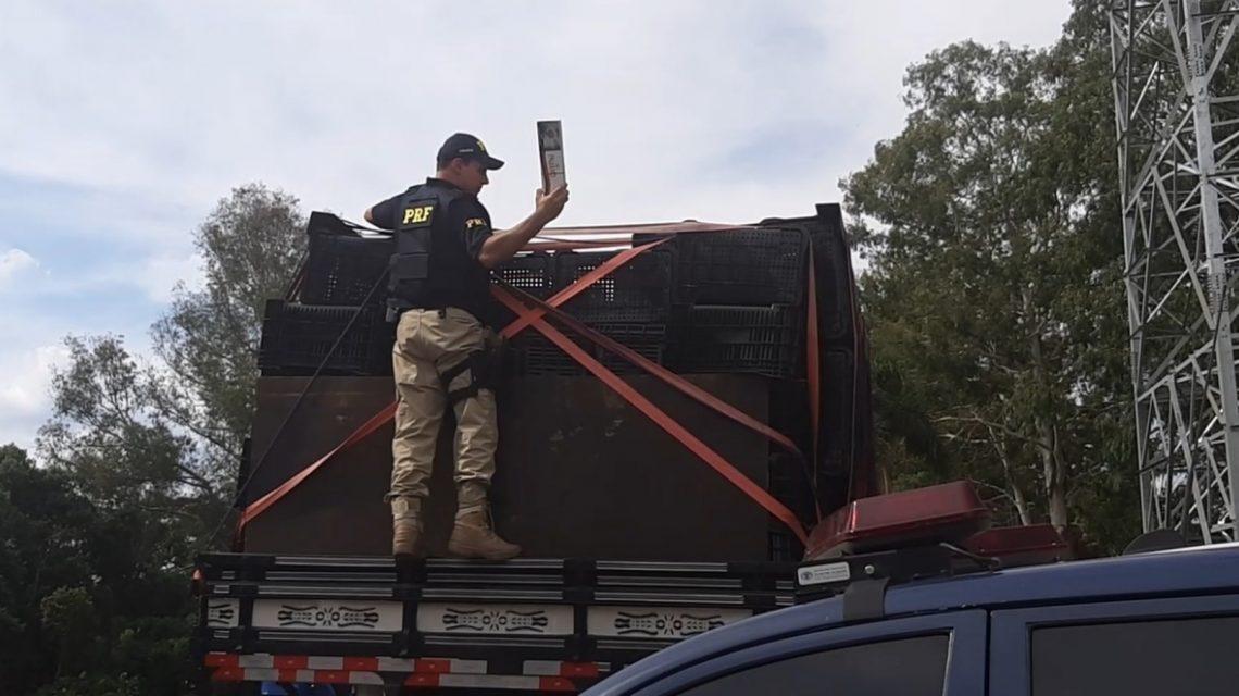 PRF apreende caminhão com 120 mil carteiras de cigarro em General Carneiro