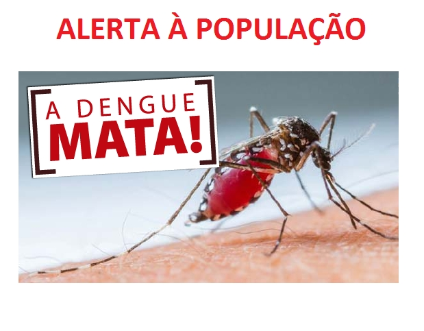 11 infectados: Casos de dengue dobram em uma semana em Francisco Beltrão