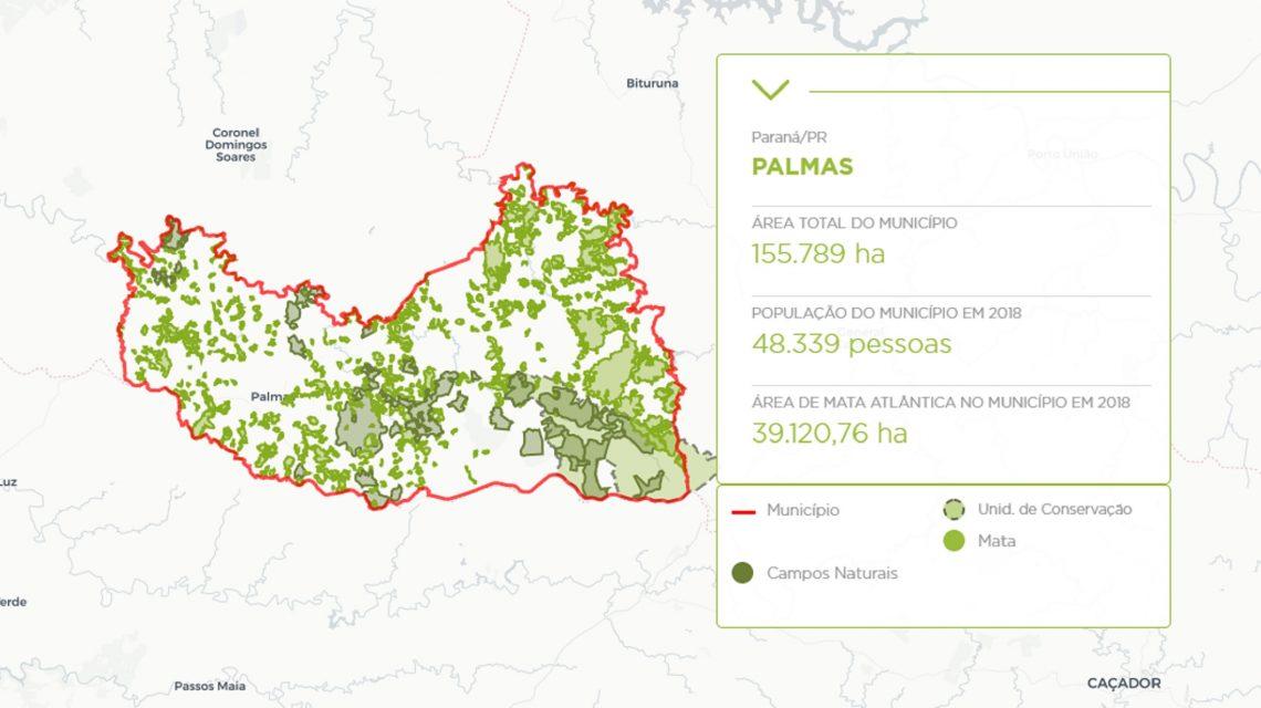 Mais de 60% da mata nativa do Sudoeste está na microrregião de Palmas