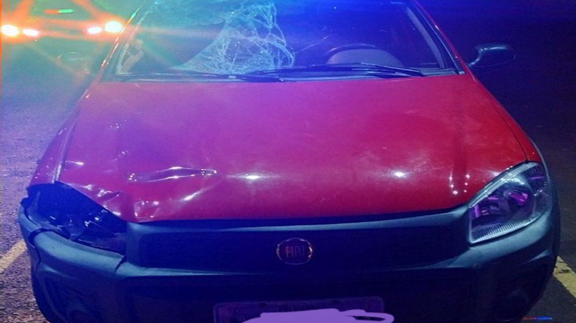 Pedestre embriagado morre atropelado na BR-277, em Virmond