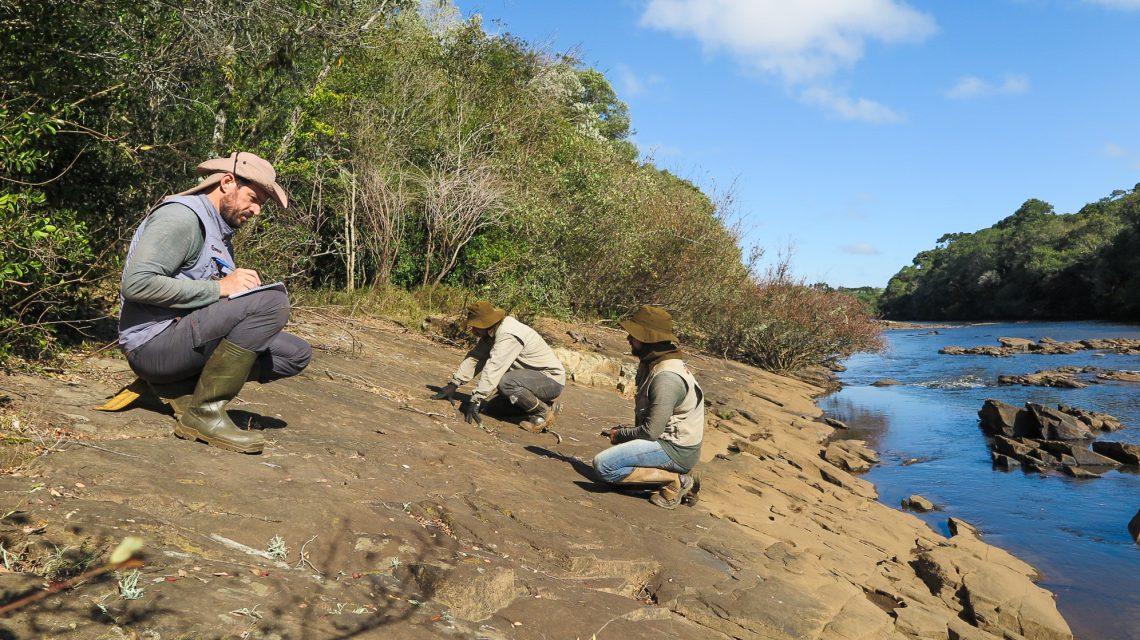Arqueólogos encontram gravuras rupestres entre Palmas e Cel. Domingos Soares