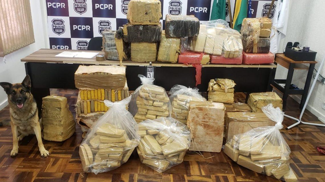 Polícia Civil apreende mais de meia tonelada de maconha em Vitorino