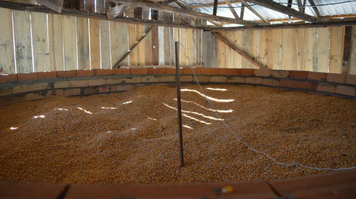 Projeto inédito busca reduzir custos e melhorar qualidade de armazenagem de grãos na região