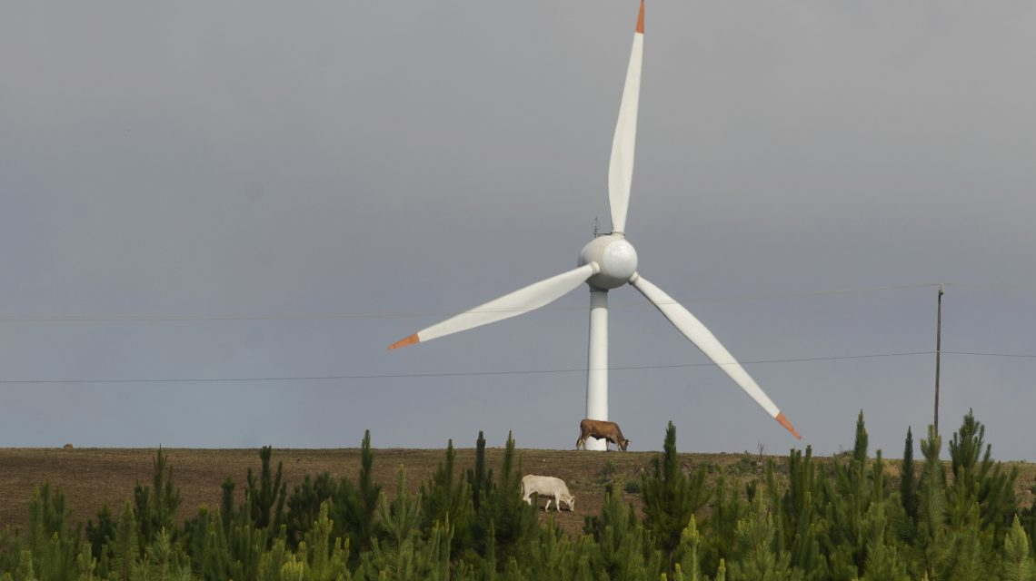 Ministério da Educação institui programa para ampliar oferta de cursos nas áreas de energias renováveis